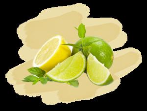 citron vert et citron jaune